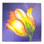 Small Tulip_640X72dpi
